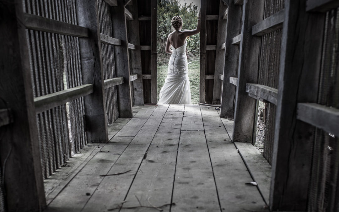 Laurita winery wedding vineyard sarah and dan laurita winery wedding sarah and dan junglespirit Gallery